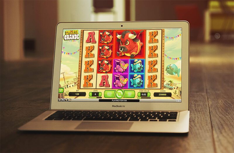 Best slots to win money with